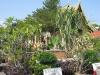 thailand-2011-457