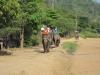 thailand-2011-654