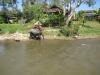 thailand-2011-674