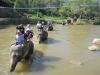 thailand-2011-685